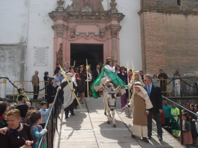 Archivo:Domingo de Ramos 2009 024.jpg