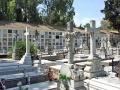 CementerioSalud11.jpg