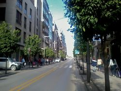 Calle recogidas 2 granada