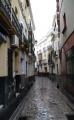 Sevilla calle harinas.jpg