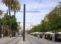 Sevilla calle s fernando.jpg